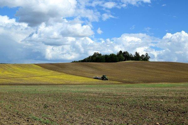 Le chanvre pourrait bientôt moderniser l'agriculture mondiale