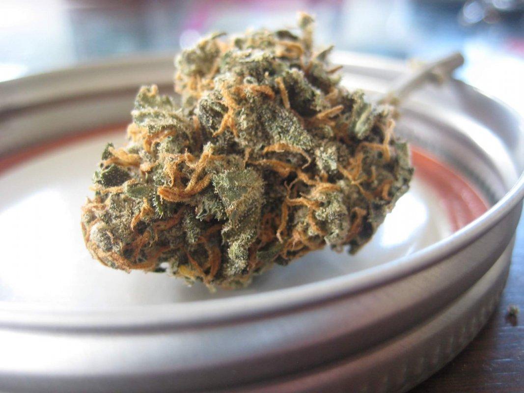 Le cannabis récréatif sera légalisé au Canada dès le 17 octobre 2018