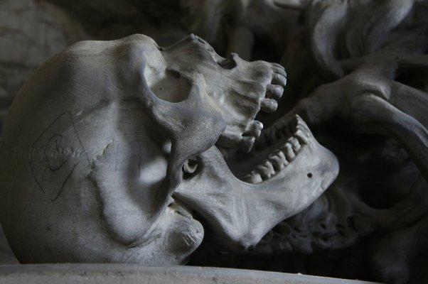Des squelettes bourrés de chanvre!
