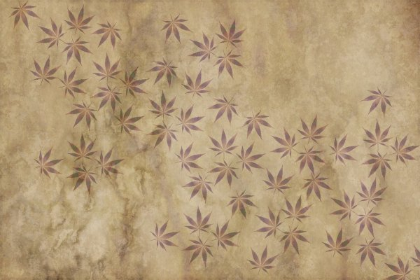 La feuille de cannabis, un symbole qui pourrait vous coûter cher